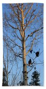 Turkey Vulture Tree Beach Towel