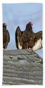 Turkey Vultures On Roof Beach Towel