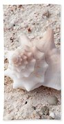 Turks And Caicos Shell Beach Towel