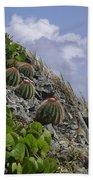 Turks Cap Cactus Beach Towel