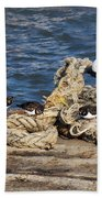 Turnstones At The Harbour Beach Towel