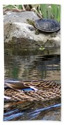 Turtle And Duck Beach Towel
