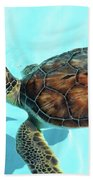 Turtle Close-up  Beach Towel