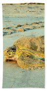 Turtle Day Beach Towel