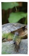 Turtle Rock Beach Towel