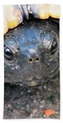 Turtle Smile Beach Towel