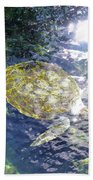 Turtle Water Glide Beach Sheet