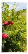 Tuscany Villa And Roses Beach Towel