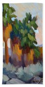 Twilight At Indian Canyons  Beach Towel