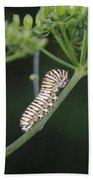 Twilight Caterpillar Beach Towel
