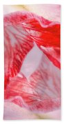 Twilight Beach Towel