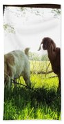 Twilight On The Farm Beach Towel