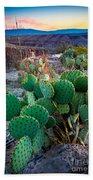 Twilight Prickly Pear Beach Sheet