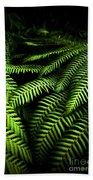 Twilight Rainforest Fern  Beach Towel