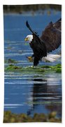 Two American Bald Eagle Touching Down At Low Tide Beach Towel
