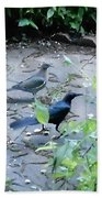 Two Birds Beach Towel
