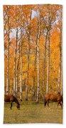 Two Colorado High Country Autumn Horses Beach Sheet