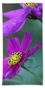 Two Cosmos Beach Towel