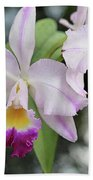 Two Delicate Orchids Beach Towel