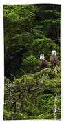 Two Eagles Perched Painterly Beach Towel