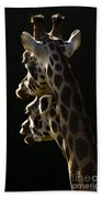 Two Headed Giraffe Beach Towel