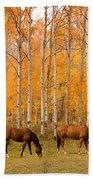 Two Horses Grazing In The Autumn Air Beach Sheet