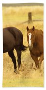 Two Horses In A Field Beach Towel