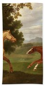 Two Horses In A Landscape Beach Towel