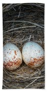 Two Junco Eggs In The Nest Beach Sheet