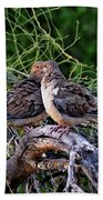Two Mourning Doves H14 Beach Towel
