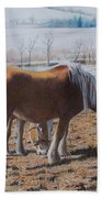 Two Ponies In The Snow Beach Towel
