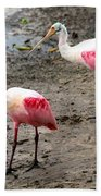 Two Roseate Spoonbills Beach Towel