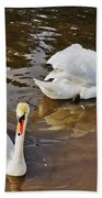 Two Swans On Spring Water Beach Towel