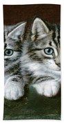 Two Tabby Kittens  Beach Towel