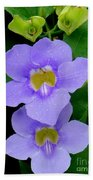 Two Thunbergia With Dew Drops Beach Towel