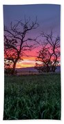 Two Trees In A Purple Sunset Beach Towel