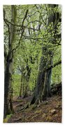 Two Trees In Springtime Beach Towel