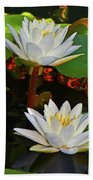 Two Water Lilies 004 Beach Towel