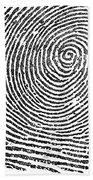 Typical Whorl Pattern In 1900 Beach Towel
