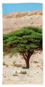 Umbrella Thorn Acacia, Negev Israel Beach Towel