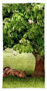 Umbrella Tree Beach Towel