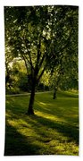 Under The Trees Beach Towel