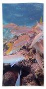 Under Water Fiji Beach Towel