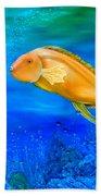 Undersea Journey Beach Towel