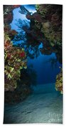 Underwater Crevice Through A Coral Beach Towel