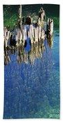 Underwater Cypress Stump Beach Towel