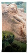 Underwater Hippo Beach Towel