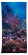 Underwater Paradise Beach Towel