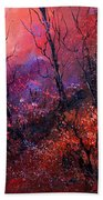 Unset In The Wood Beach Towel