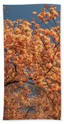 Up To The Cherry Flowers Beach Towel